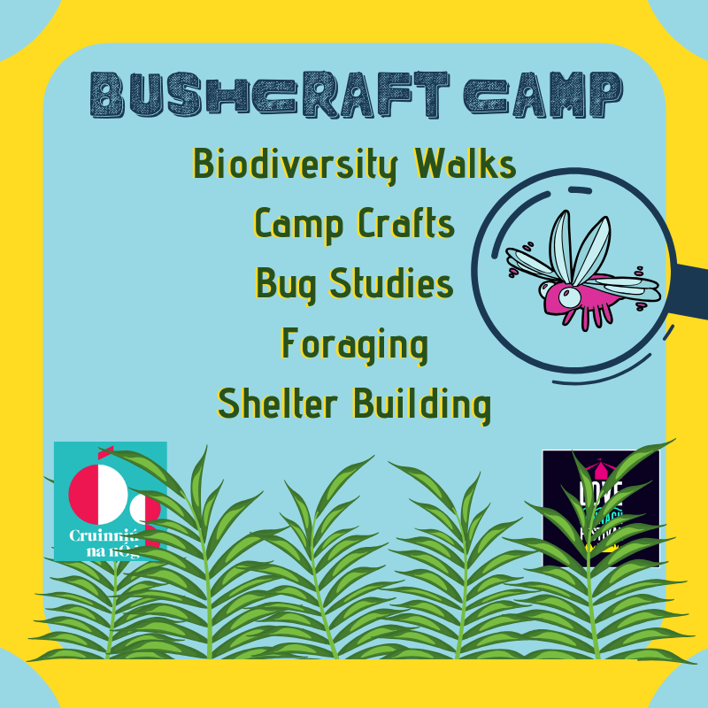 BushCraft Camp Biodiversity Walks, Camp Crafts Bug studies, shelter building at Lannagh Festival